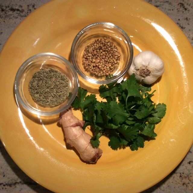 Ingredients for ginger-garlic-fennel and coriander seeds paste. © 2015 Sangeeta Pradhan
