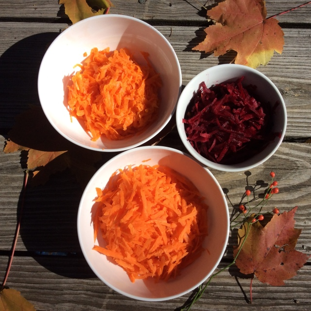 While pumpkins and carrots are abundant in beta carotene, beets are not a significant source. © Copyright, 2016, Sangeeta Pradhan, RD, LDN, CDE.